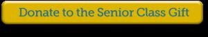 senior-class-gift-button1
