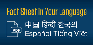 Fact sheet in your language