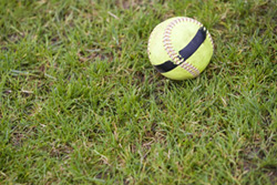 softball_web