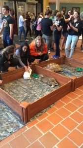 Students playing with rescue animals