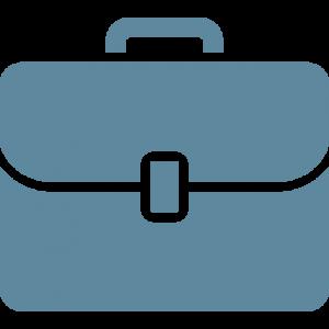 2015 WGS Panel Briefcase Website